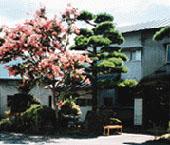 太平楽酒造店