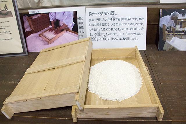 予約制の内蔵見学では醪(もろみ)発酵の様子など酒造りの過程を見ることができます