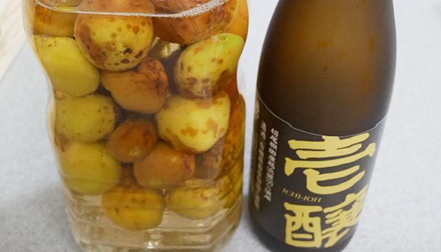 【日本酒好きなら試したい!】日本酒唎酒師がおススメする自家製梅酒の作り方!