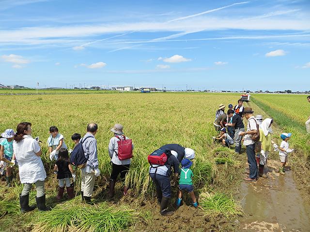 「新潟しゅぽっぽ」のテーマは「旅と食と地域をつなぐ日本酒」。
